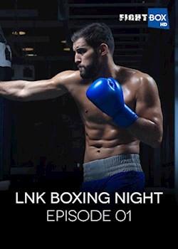 Link Boxing Night