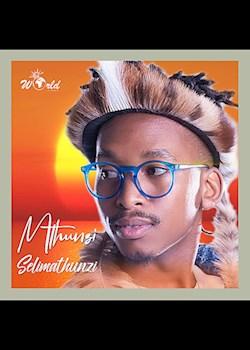 Mthunzi, Sun-El Musician - Insimbi