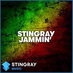 STINGRAY Jammin